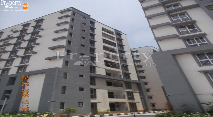 Coconut Grove Apartment got sold on 03 May 2019