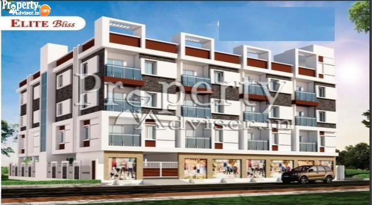 Elite Bliss in Beeramguda updated on 13-Jun-2019 with current status