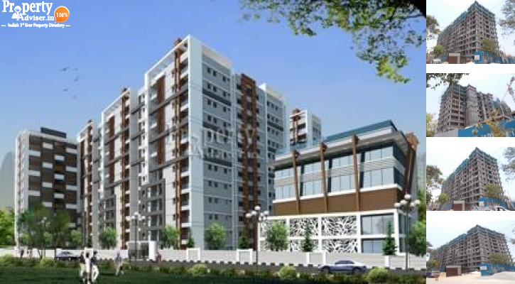 Latest update on Solitaire Heights Block B Apartment on 13-May-2019