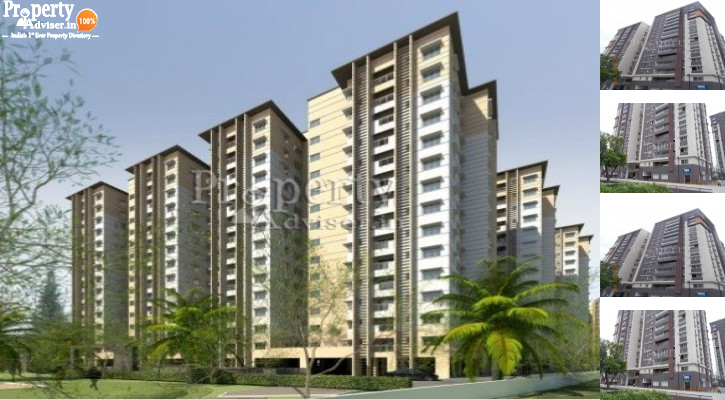 Necklace Pride Block D in Kavadiguda Updated with latest info on 12-Aug-2019