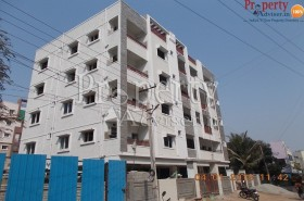 Bashani Construction 2 Apartment Hyderabad Interior painting work completed