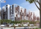 Latest Update on Landmark - B Apartment on 29 Apr 2019