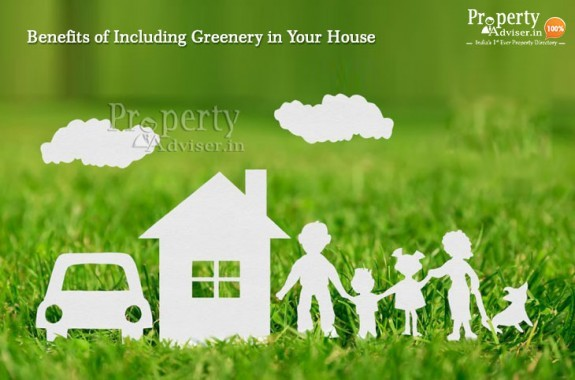 Five Benefits of Including Greenery in Your House
