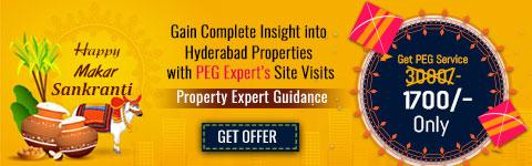 PEG Service Sankranthi Offer