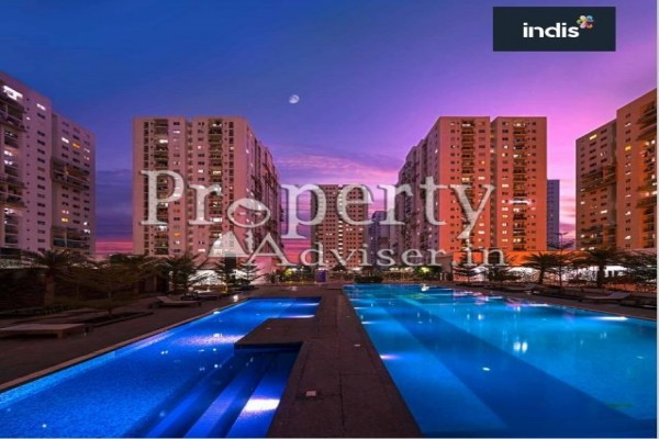 Indis Pbel City - M