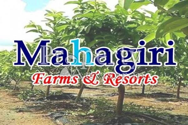 Mahagiri Farms & Resorts