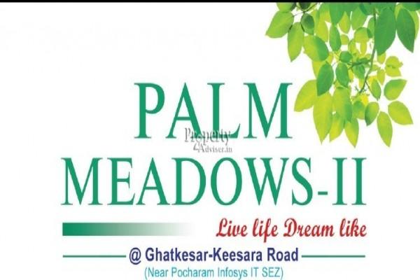 Palm Meadows II