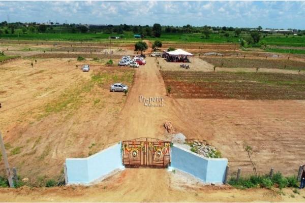 Vynatheya Farms
