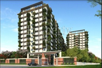 Tripura Green Alpha